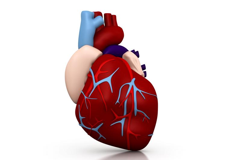 Drugs for the weak heart! – Get Heart Healthy!